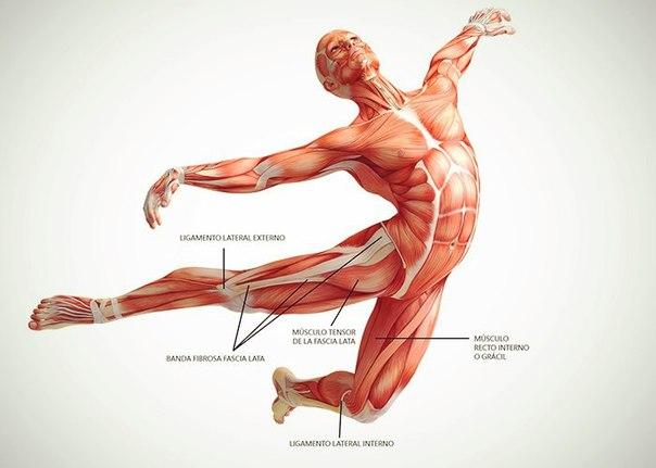 Больв коленном суставе