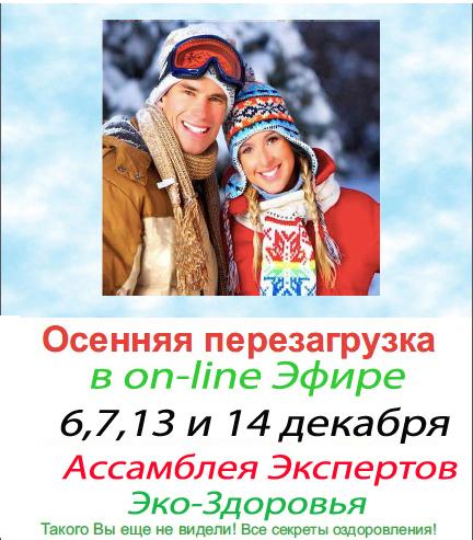 Ассамблея Зимняя14 copy4